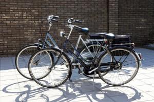 Free Cycle Loan