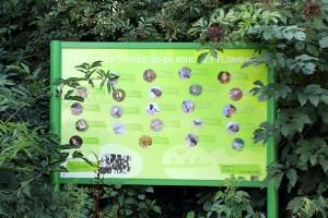 Florapark